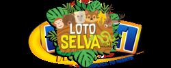 Loto Selva